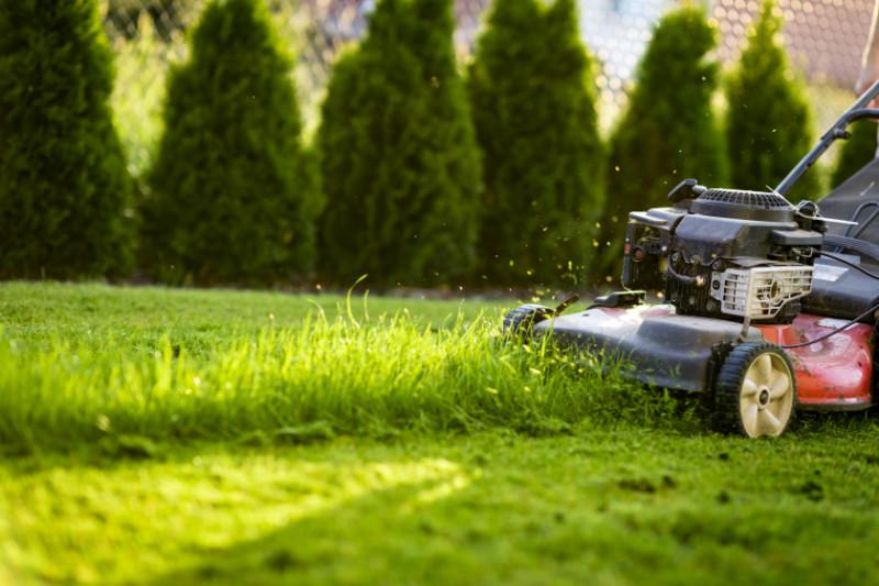 koszenie trawy olsztyn